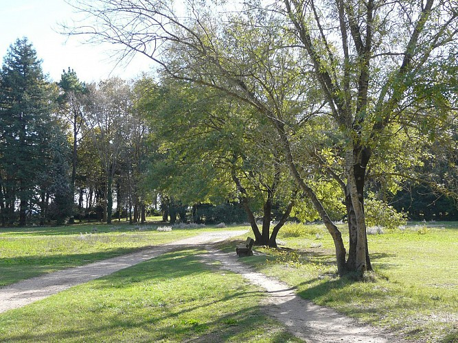Circuit forestier au Parc de Vaugrenier - Villeneuve-Loubet