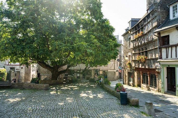 Arboretum de Saint-Brieuc