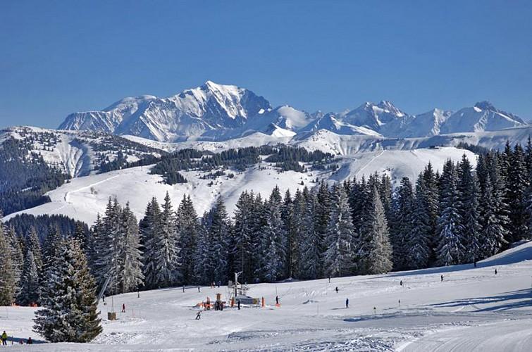 Le Cernix / Mont-Lachat
