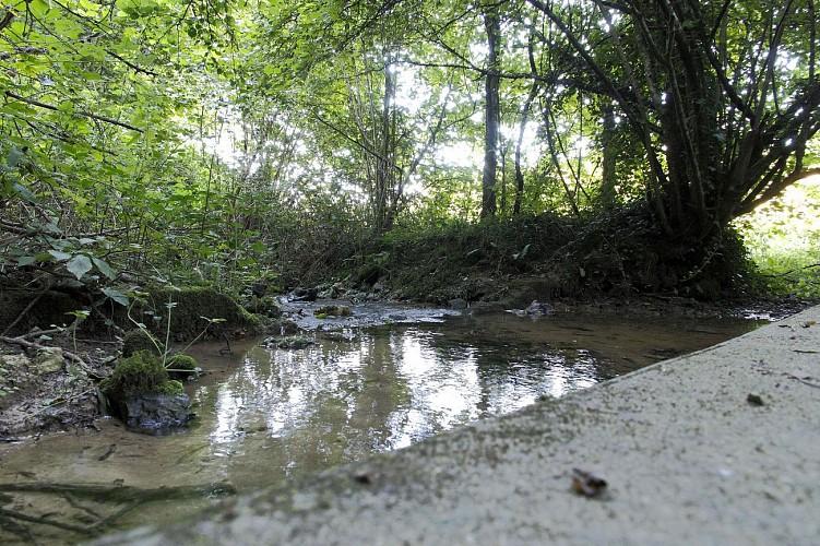Randonnée sur le chemin du Val Jouen, Triqueville 27500