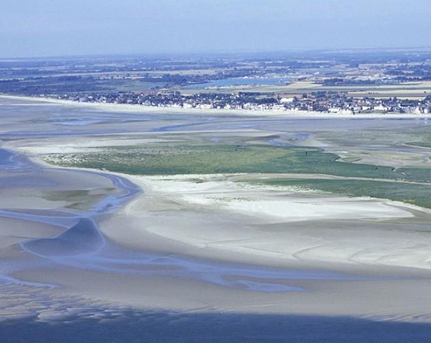 La Baie de Somme, un haut lieu ornithologique