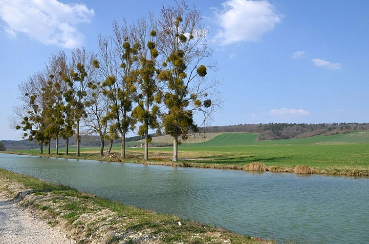 Canal de Bourgogne vallonné et dominé par le château de Châteauneuf