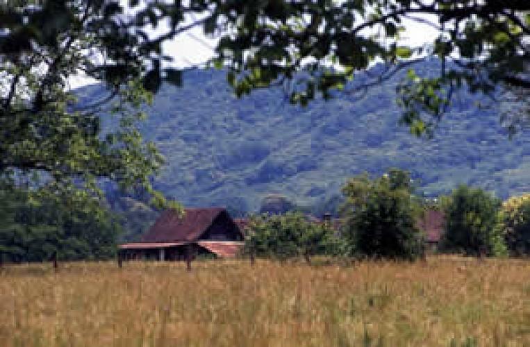 Paysage Vals du Dauphiné 2