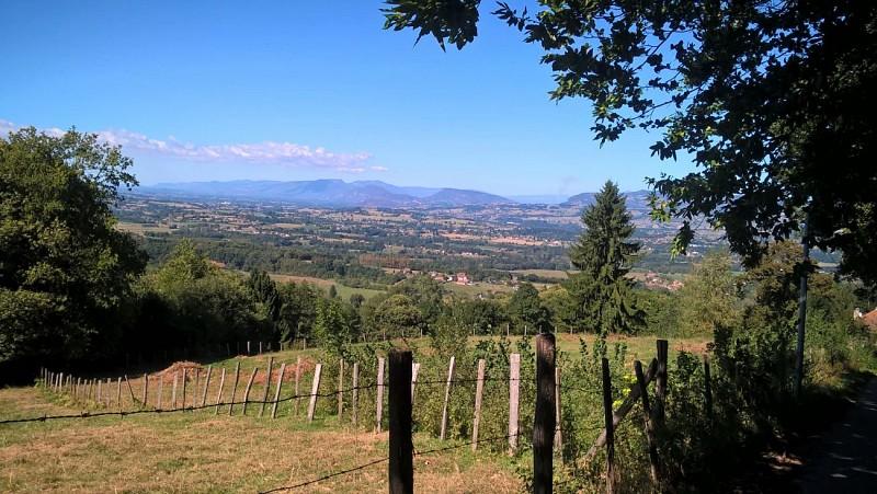 Sentier : La Saint Martinoise
