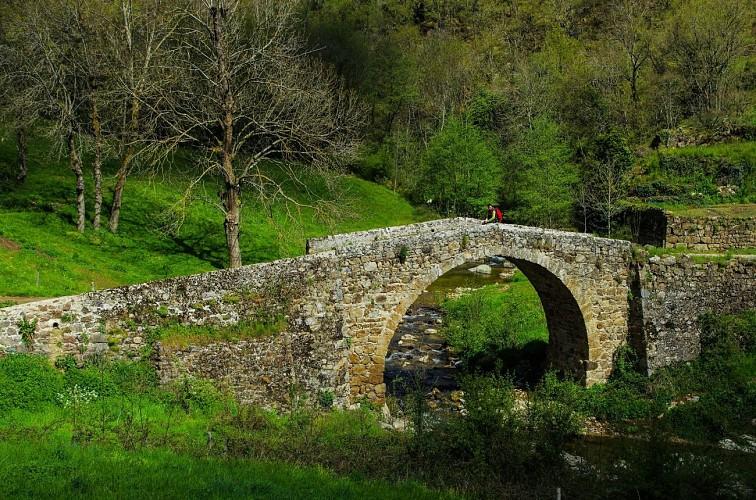 Randonnée : Tour du Pays de Saint Félicien Jour 1