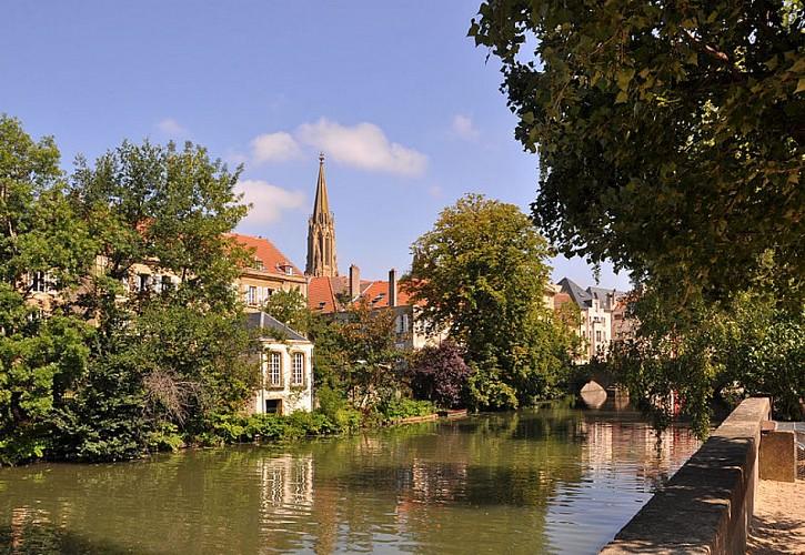 La Moselle et sa Réserve Naturelle Régionale