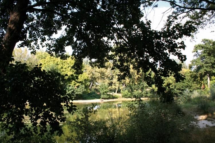 La plaine de Marsillargues