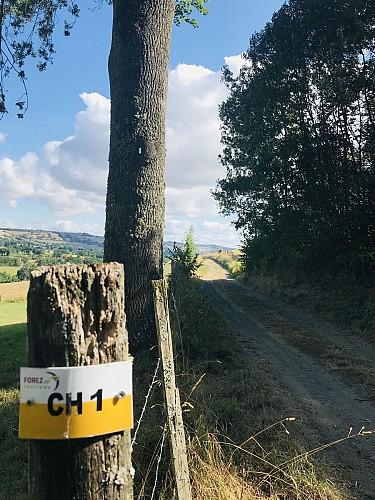 Sentier des Paysages des Monts du Lyonnais