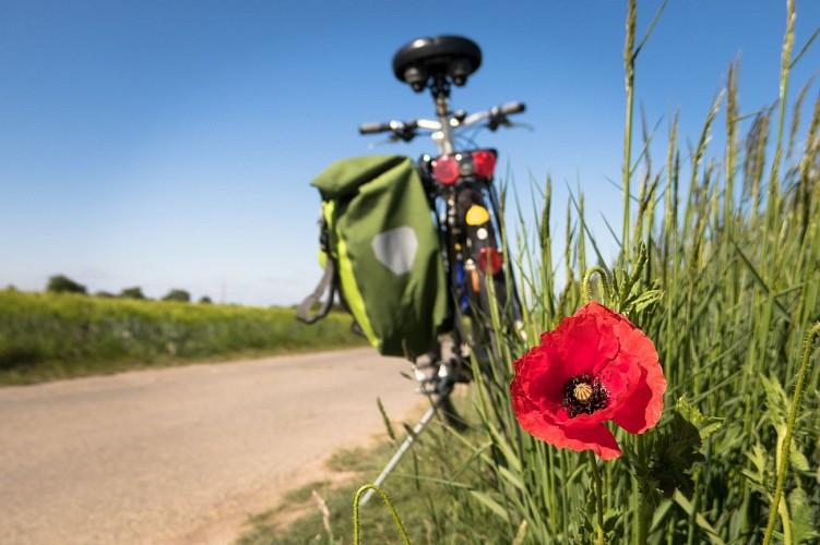 Circuit cyclo n°02 à Autun