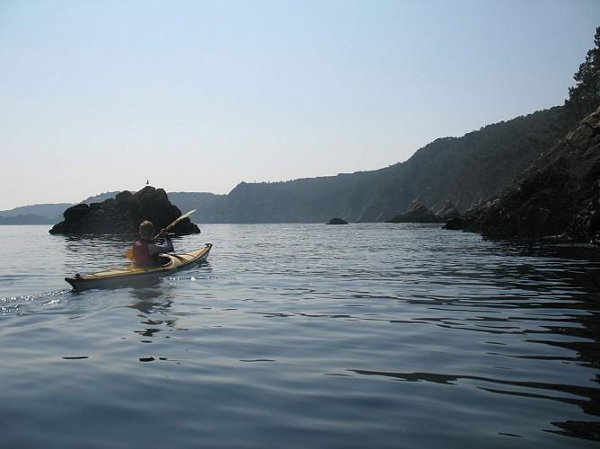 Découverte Nature en Kayak sur la Presqu'île de Crozon
