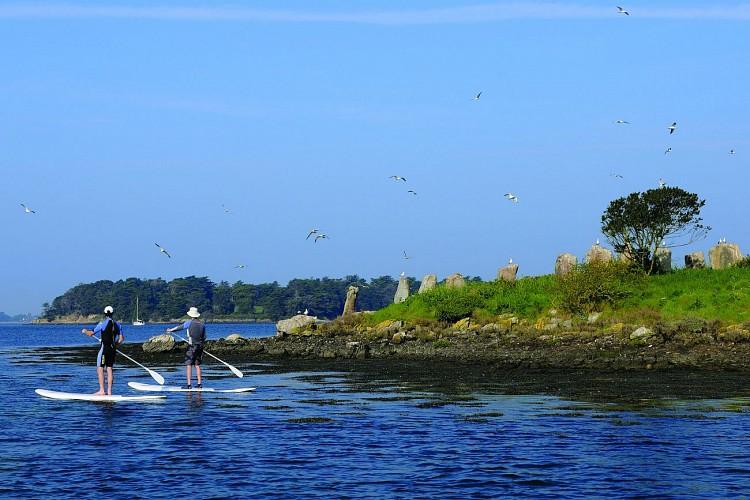 Stand up dans le golfe du Morbihan