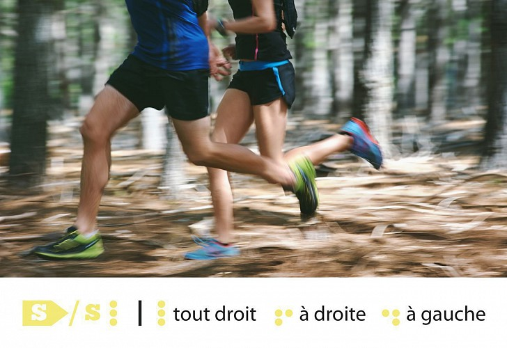 Huy - Trail Permanent S 10,5 km - Départ : Gives