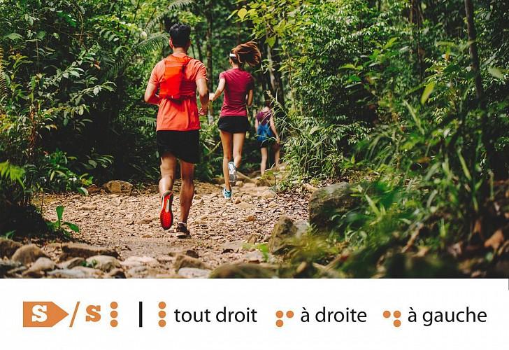 Huy - Trail Permanent S 12 km - Départ : Solières