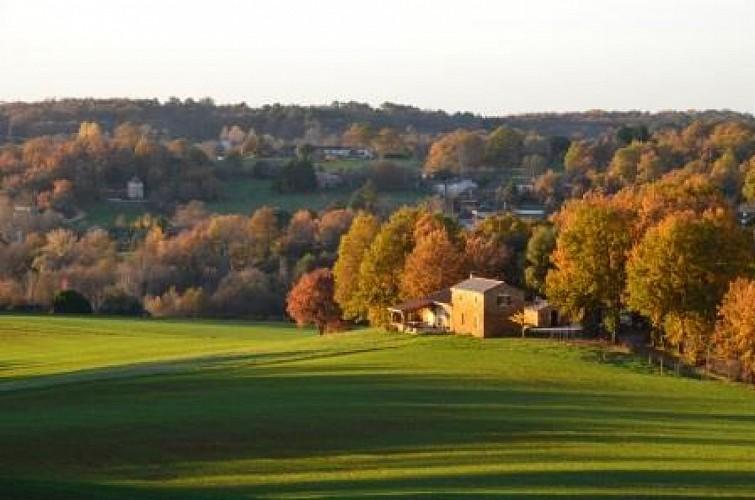 Lacapelle-Biron, randonnée dans les bois du Périgord