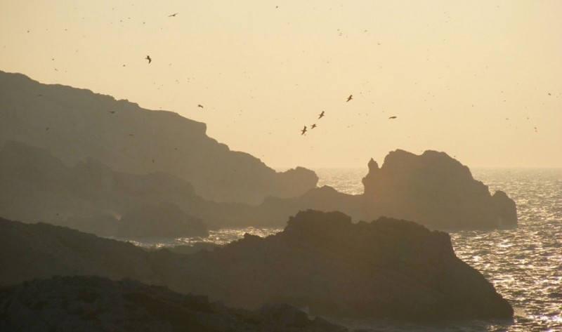 Découverte de l'archipel du Frioul