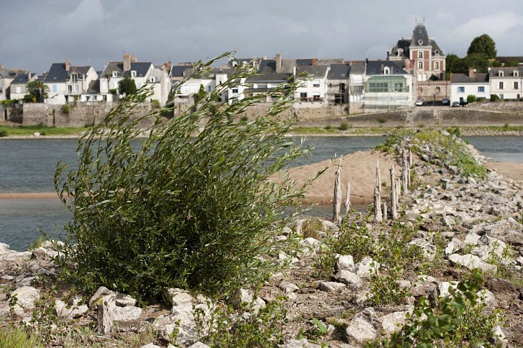 A vélo, les villages de pêcheurs des bords de Loire.