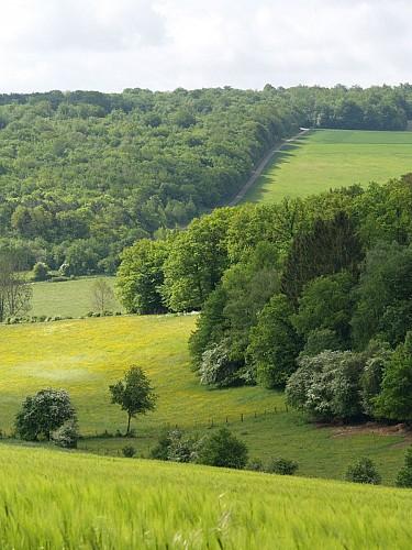 Les 8 Chevaux Dugny sur Meuse