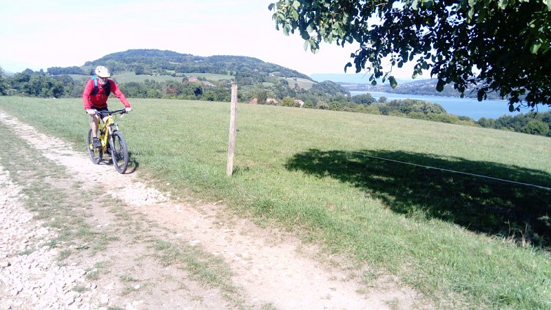 Circuit VTT n° 6 - Petit Tour du Lac de Paladru