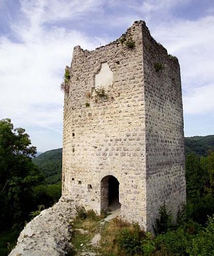 Circuit pédestre : Château de pierres et de terre