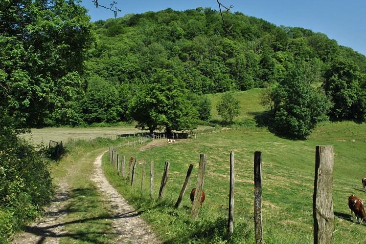 Rando pédestre : Châteaux de terre et de pierres