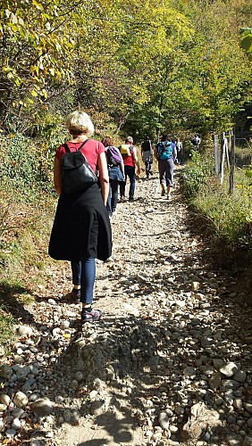 Walking trail: Vouise Mountain