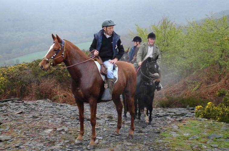 A cheval sur l'Equibreizh Sud