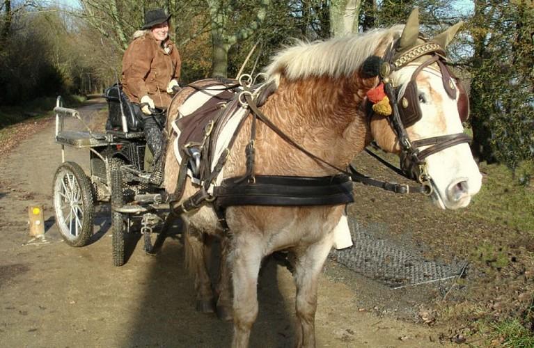 A cheval sur l'Equibreizh Sud Est