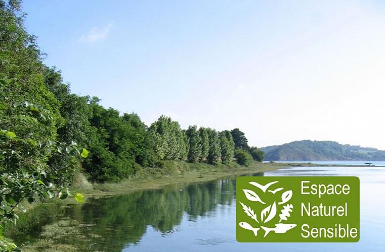 Balade dans le Bois de Rigourdaine - Plouër-sur-Rance