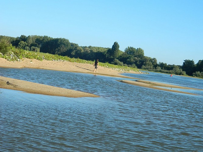 Belle randonnée avec vues sur Loire - ANETZ