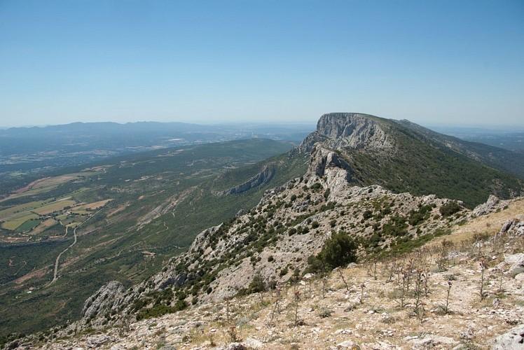 Sentier découverte du pic des mouches - Montagne Sainte - Victoire (Grand site de France)