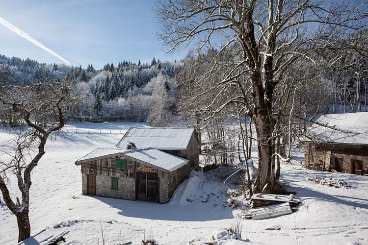 Circuit raquettes alpage de Lain pays d'Evian