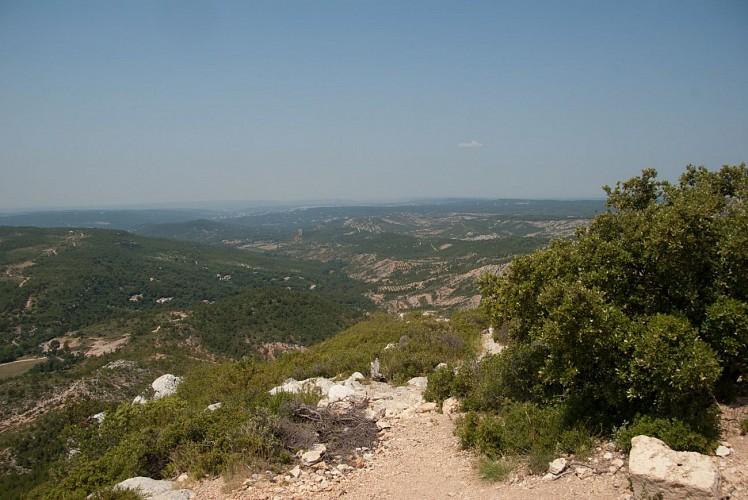 Sentier découverte de l'oppidum - Montagne Sainte-Victoire (Grand site de France)