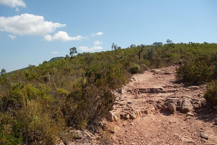 Sentier découverte de la Mine de Cap Garonne