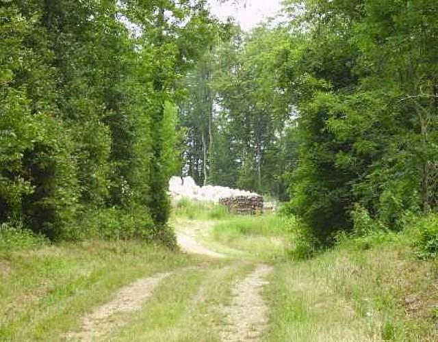 Balade sur les chemins de Leuvrigny