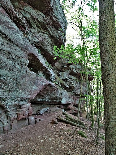 Sentier du Loosthal