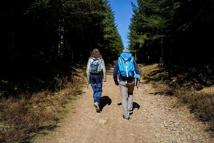 Hiking Tour - Etape 2- Auberge de Namur - Auberge de Bouillon