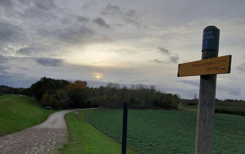 PR Loire et forêt