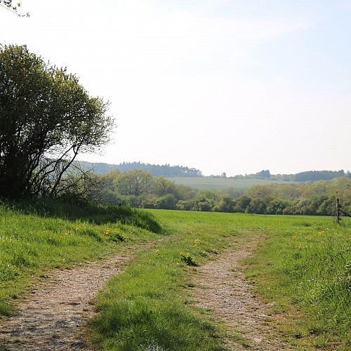 beauraing - vonêche - froidfontaine -  honnay