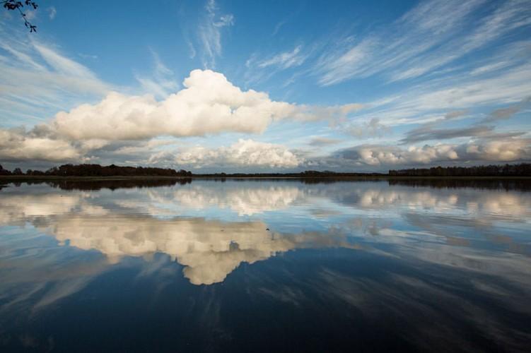 D'un étang à l'autre - Entre ciel et eau