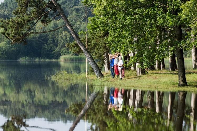 Autour de l'étang de Bellebouche