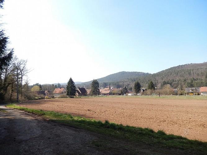 Balade à Sparsbach