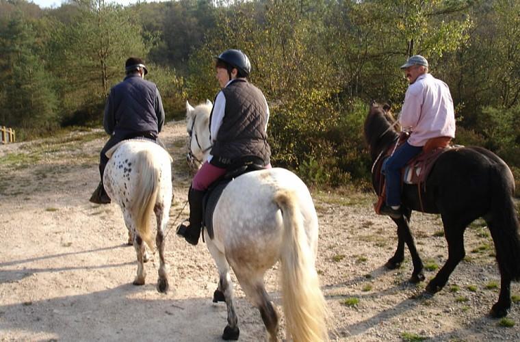 A cheval boucle du Tro Vras en forêt d'Avaugour