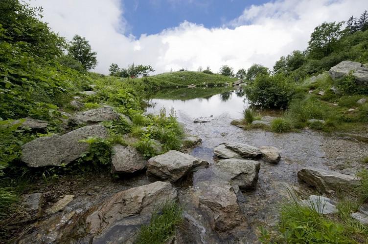 Randonnée pédestre : 4 - Chalets et lac d'Armancette