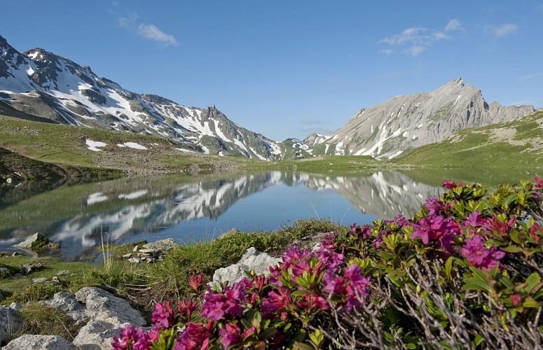 Parcours marche randonn e p destre 10 lacs jovet - Office du tourisme les contamines montjoie 74 ...