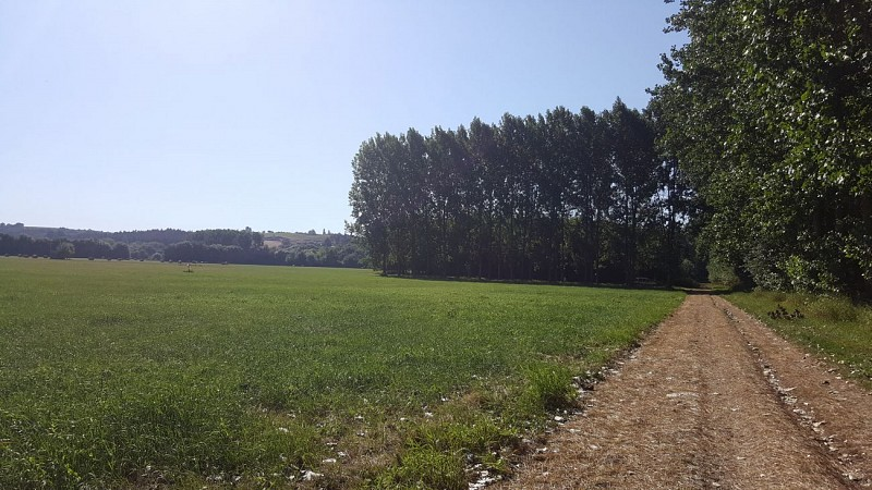 Loire - Boire de la Ciretterie