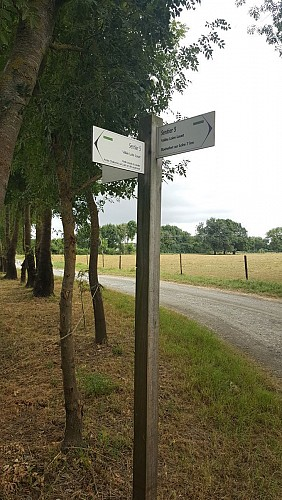 Vallée Loire - Louet