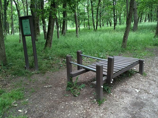 Parcours de santé de la ville de Dombasle