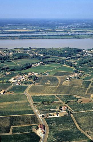 Vignoble en citadelle - Boucle de Blaye