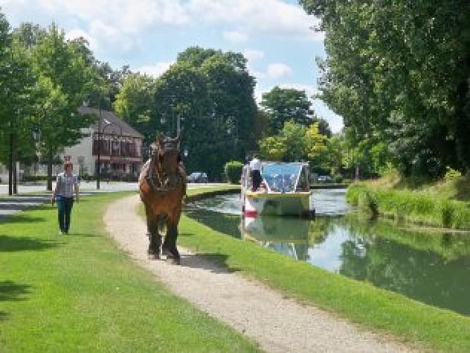 Les croisières de l'été du Canal