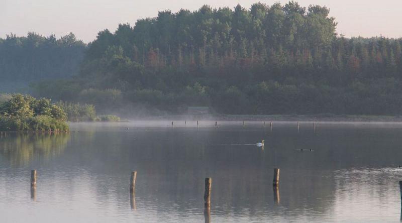 Circuit de l'étang de Careil (n°116)